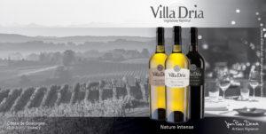 Publicité vin